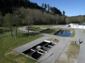 Fischfarm Beihingen