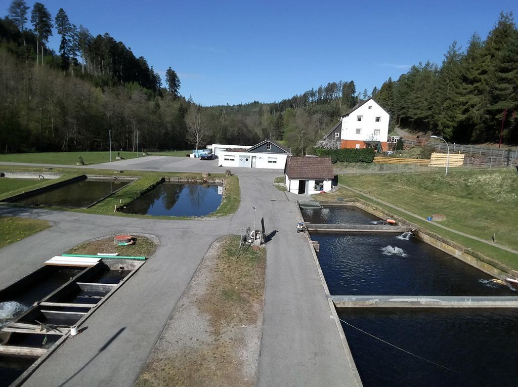 Hofladen Haiterbach Beihingen